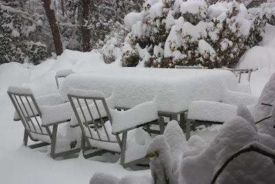 Snowy View Update