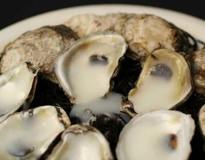 natural harvest livro receita esperma sêmen ostras