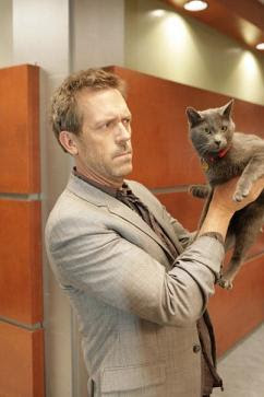 house md quotes here kitty