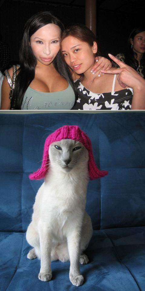 mulher com cara de gato