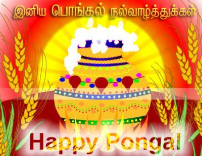 Happy Pongal Wishes Greetings 2011,