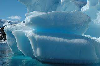 زيارة الى قارة انتاراكتيكا 7.jpg