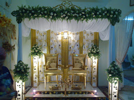 Pelamin kerawang 1