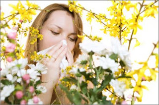 Keep Your Upper Respiratory Allergies in Check! They Are Likely to Lead You Towards Asthma!