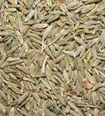 cumin seeds jintan