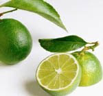 yellow skin limes jeruk nipis