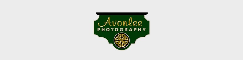Avonlee Photography
