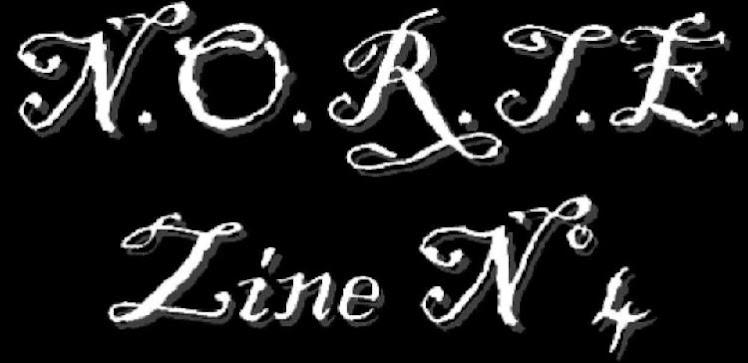 N.O.R.T.E. Zine