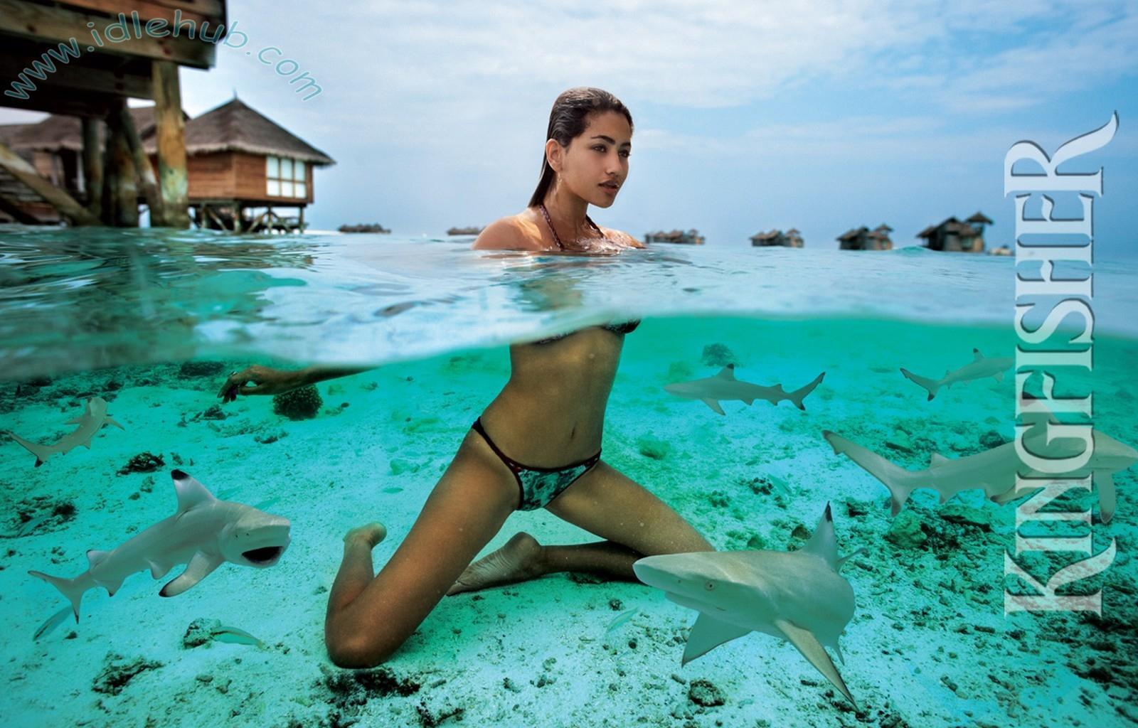 Knows it. kingfisher bikini calendar 2009