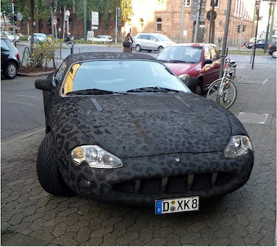 Faux Crocodile Skin Car