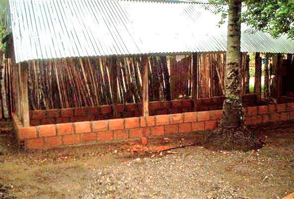 Blog de willians alfredo salom myers pollos de engorde for Construccion de galpones