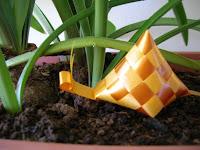 Macam-Macam jenis Bentuk Ketupat siput