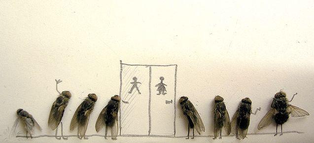 [mosca6.aspx]
