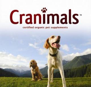 Dog Food Supplements For Shedding