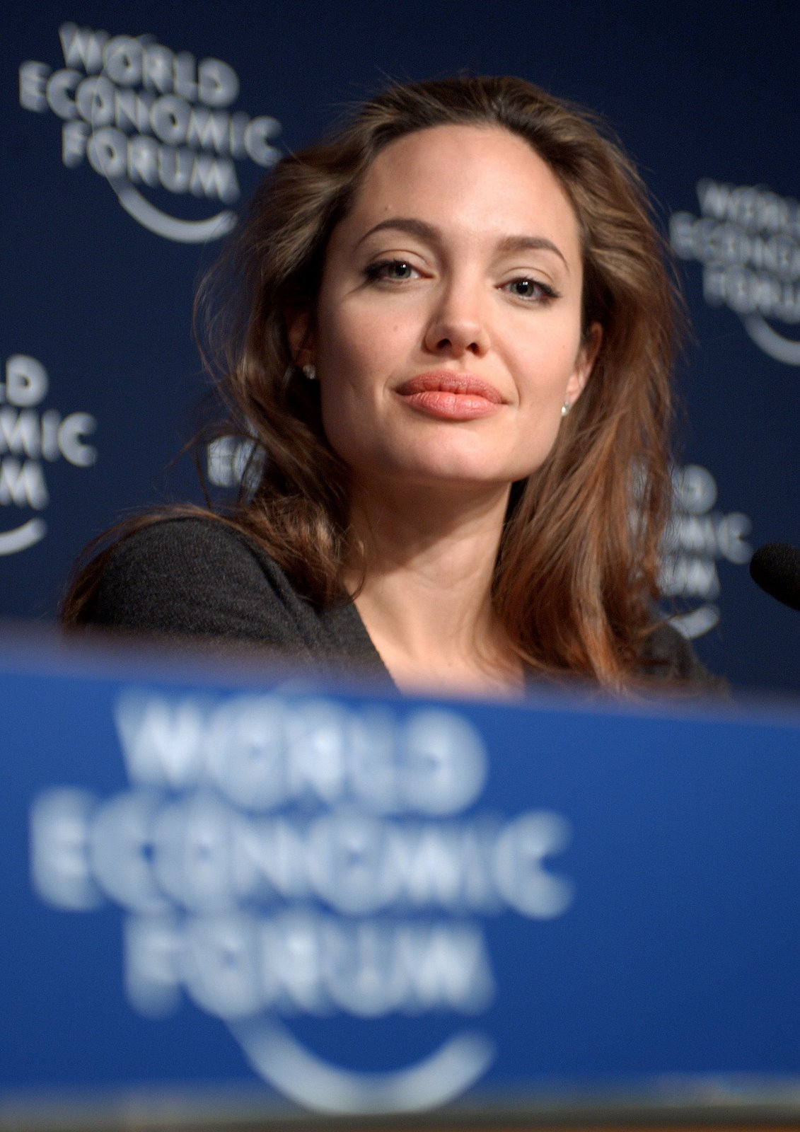 http://2.bp.blogspot.com/_0I-smBDKGVs/THyEHWjWk9I/AAAAAAAADJ8/f3XAXcQfu8c/s1600/Angelina_Jolie_at_Davos.jpg
