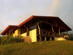 Villa Vagabundo Lake Arenal