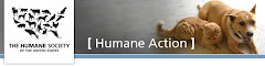 1/14/10 Click on pic.   Help Create More Humane Laws For Ky Dogs and Cats
