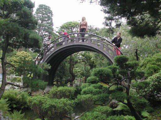fun places in san francisco s golden gate park