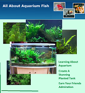 All About Aquarium Fish Magazine April 2010 Issue