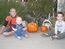 My 3 Little Pumpkins!!!