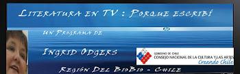 Programa de Literatura en TV