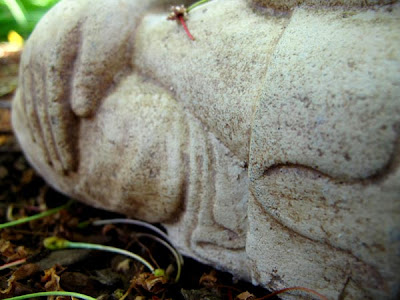 garden buddha sculpture knee