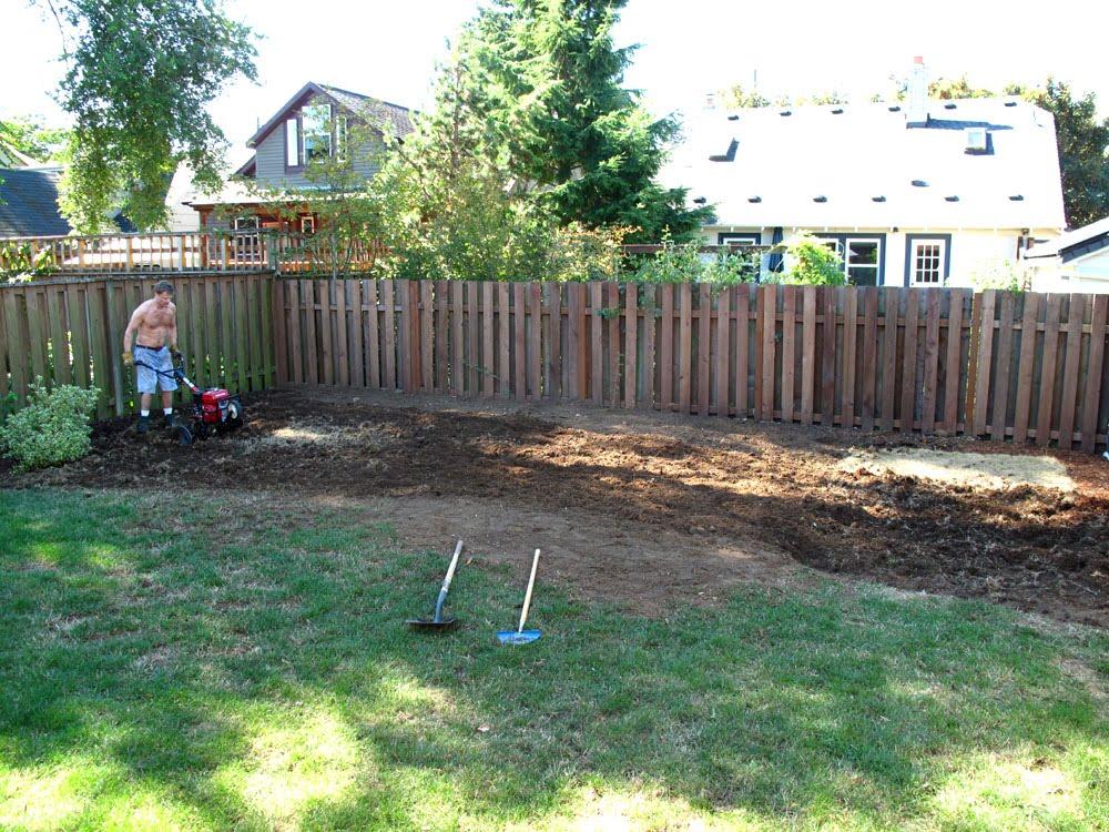 backyard sanctuary killing the grass