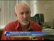 Gente boa o Mozart 50%...
