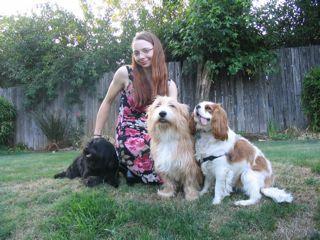[Dog+cousins]