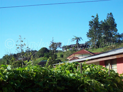 malay village cameron highlands