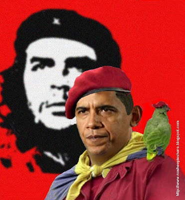 Obama Parrot