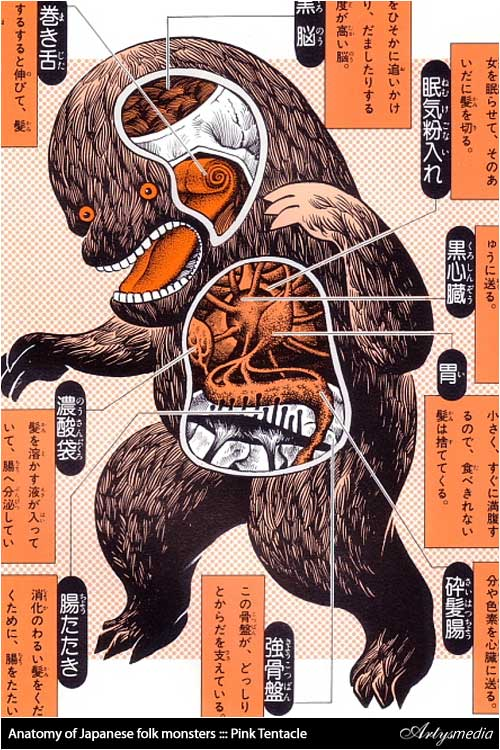 Anatomy of Japanese folk monsters ::: Pink Tentacle