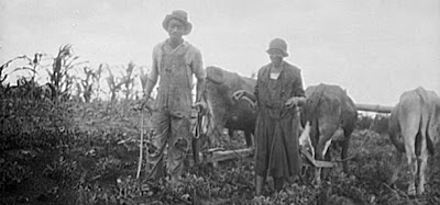 Black Farmers Settlement Checks | Share The Knownledge