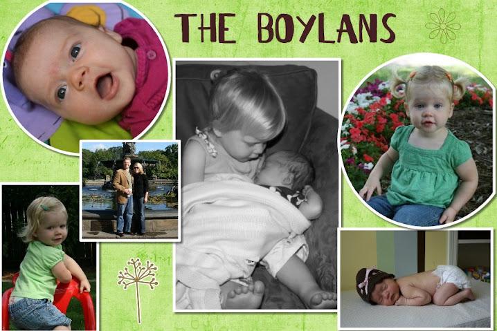 The Boylans