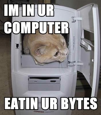 TFF seems to be HACKED! Lolcat___Computer_Eating_by_Tenkyougan