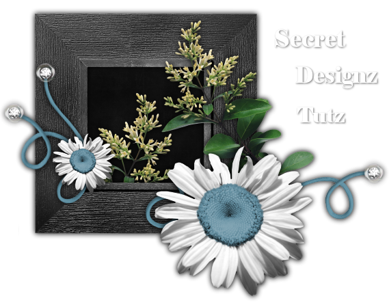 Secret Designz Tuts