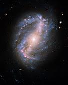 NGC 6217