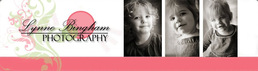 Lynne Bingham Photography