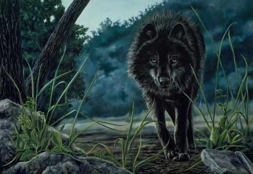 Black Wolf Hunting