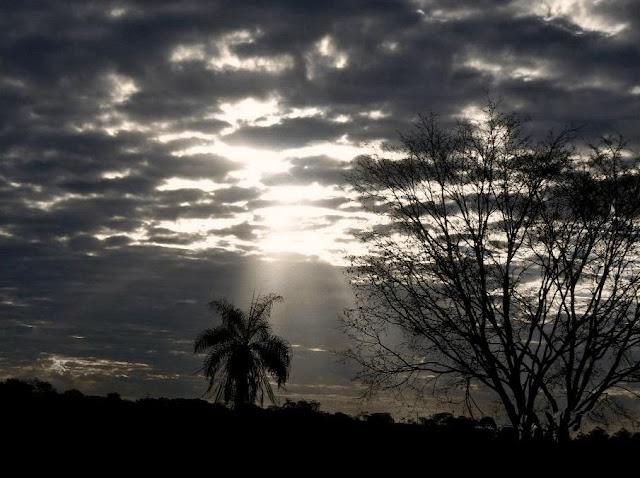 Inverno no Cerrado_por do sol