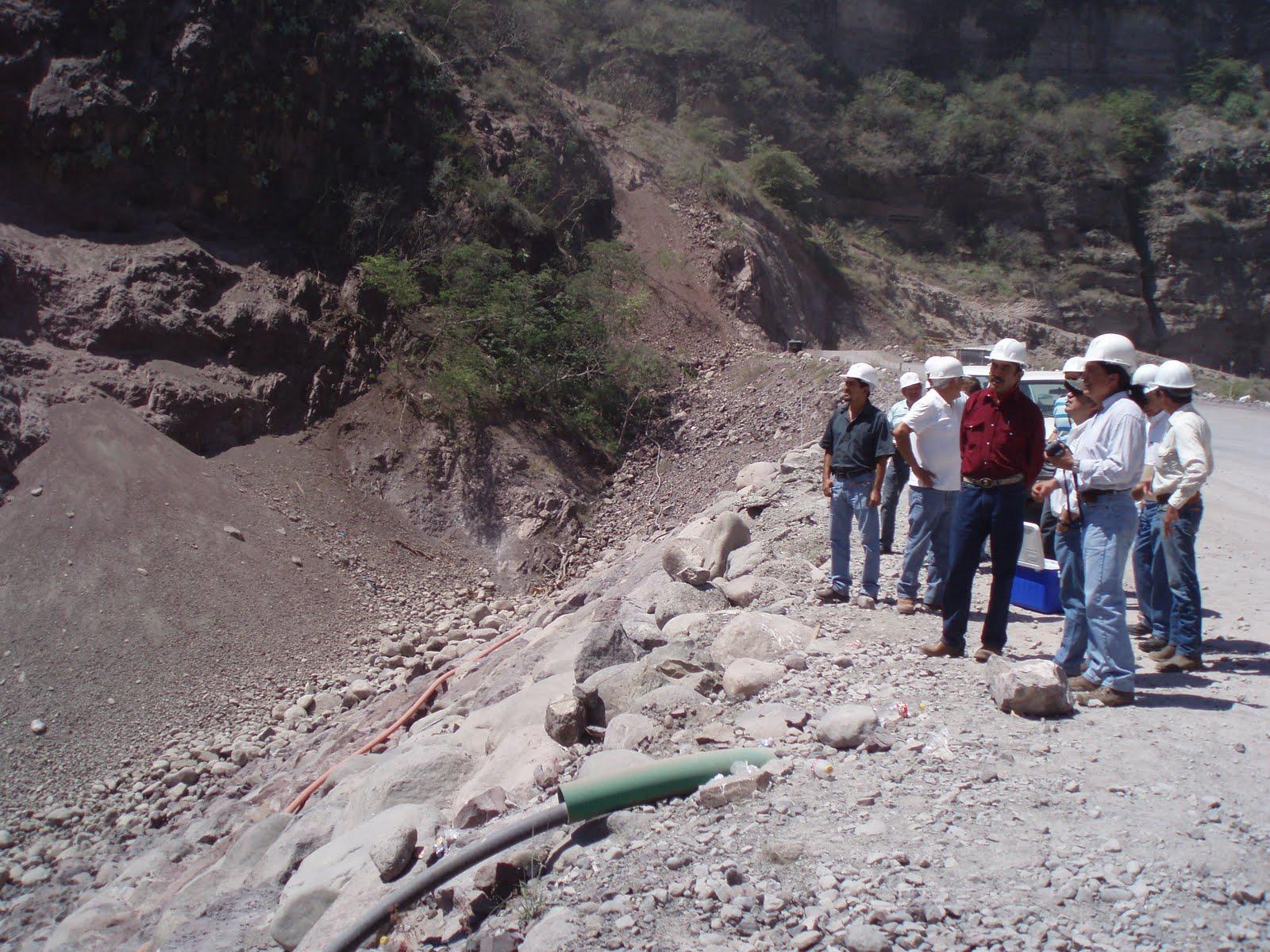 Urgue estrategias para los productores de aguacate jaime for Hipotecas suelo ultima hora