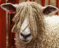 Bisbal (pelo de oveja) en la celebración de la roja