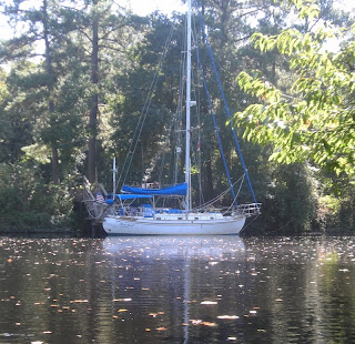 Spending the night in the Dismal Swamp, North Carolina