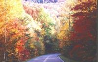 [tennessee+leaves]