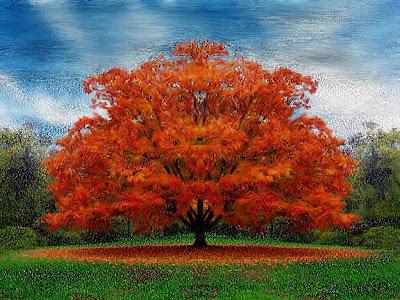 visioni del mondo albero con foglie rosse