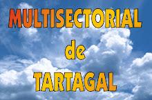Sitio de la Multisectorial del 10 de Junio de 2008