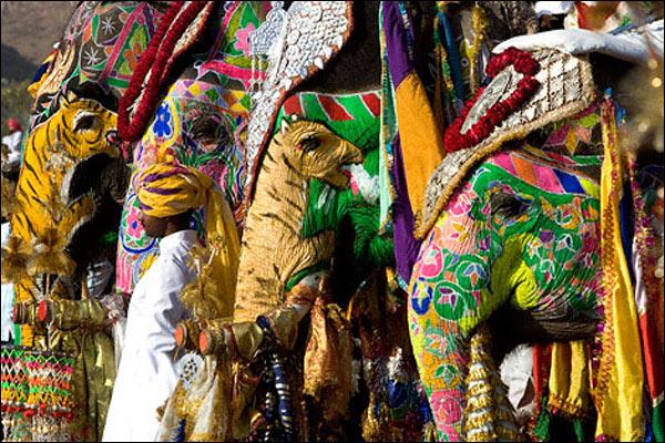 o elefante - a memória de um eu distante.