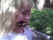 Chey and the Butterfly