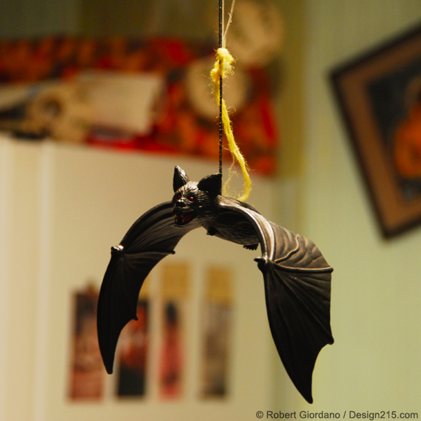 Kitchen Bat