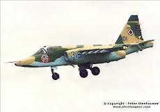Sukhoi su-25 Gralha